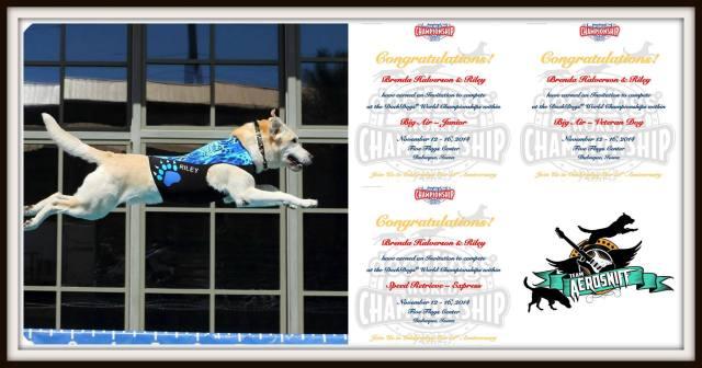 Riley's World Championship Invitation